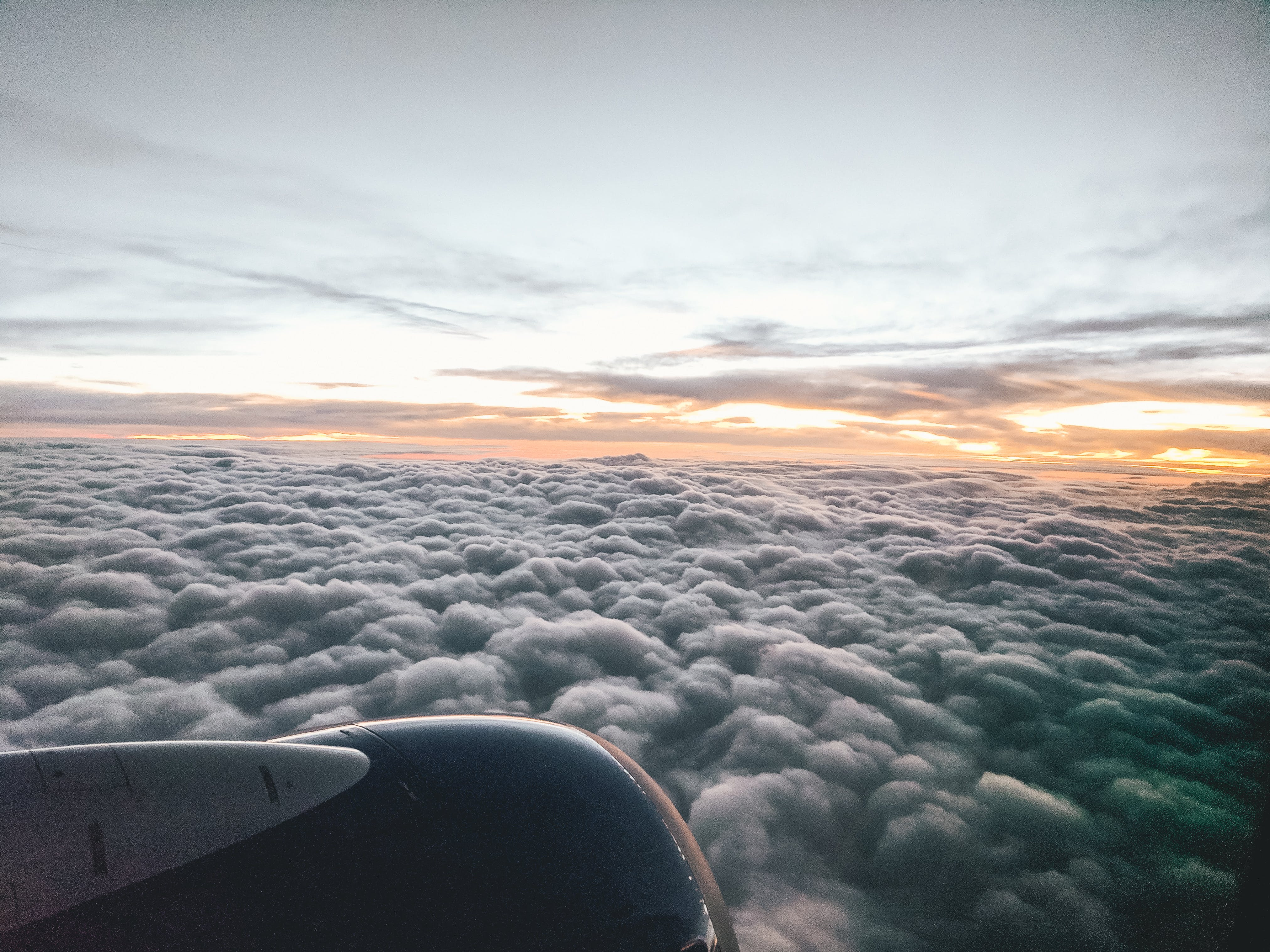 Free stock photo of airplane, clouds, flying, sunrise
