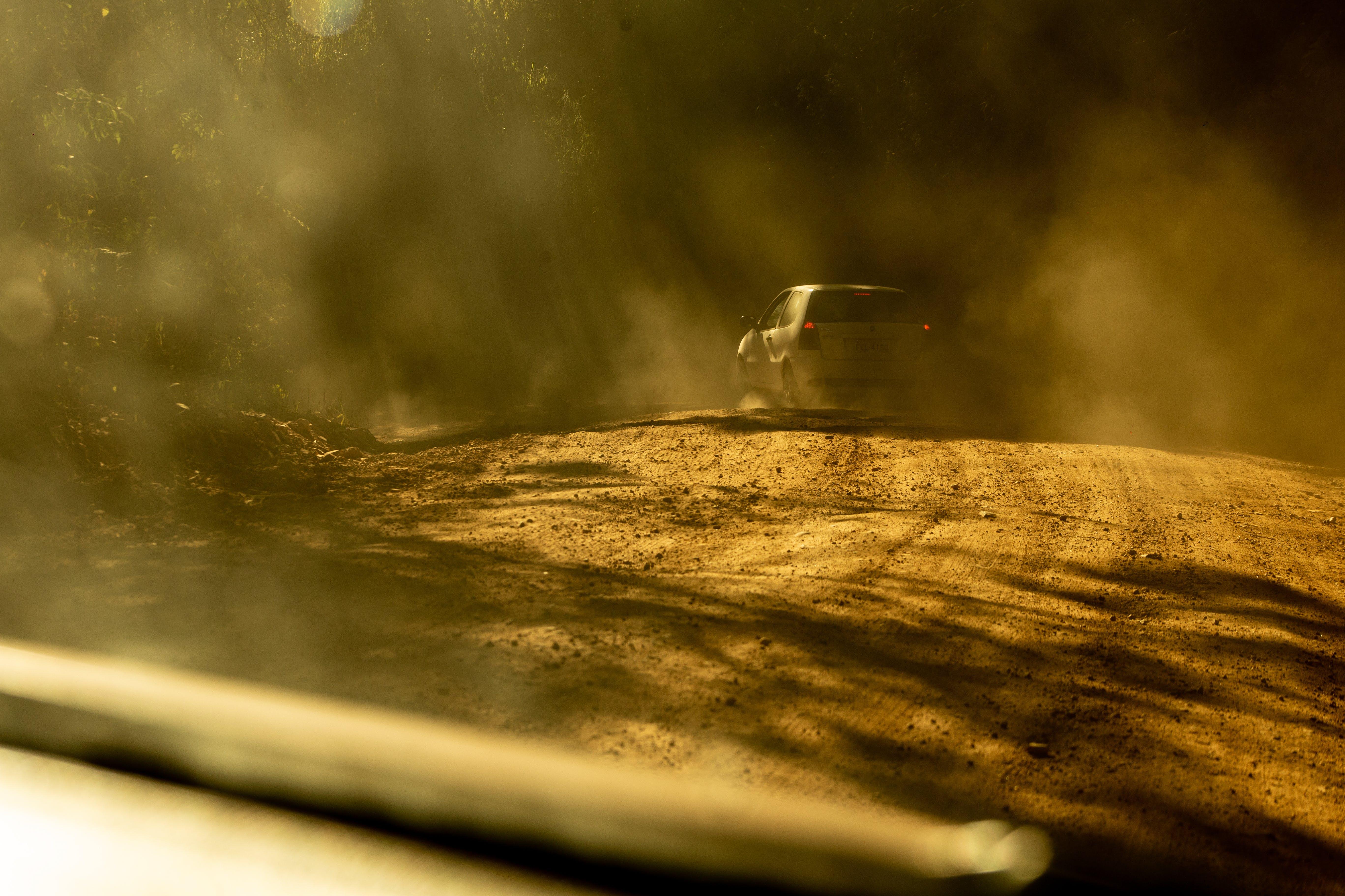 Ingyenes stockfotó fák, fény, festői, földes út témában