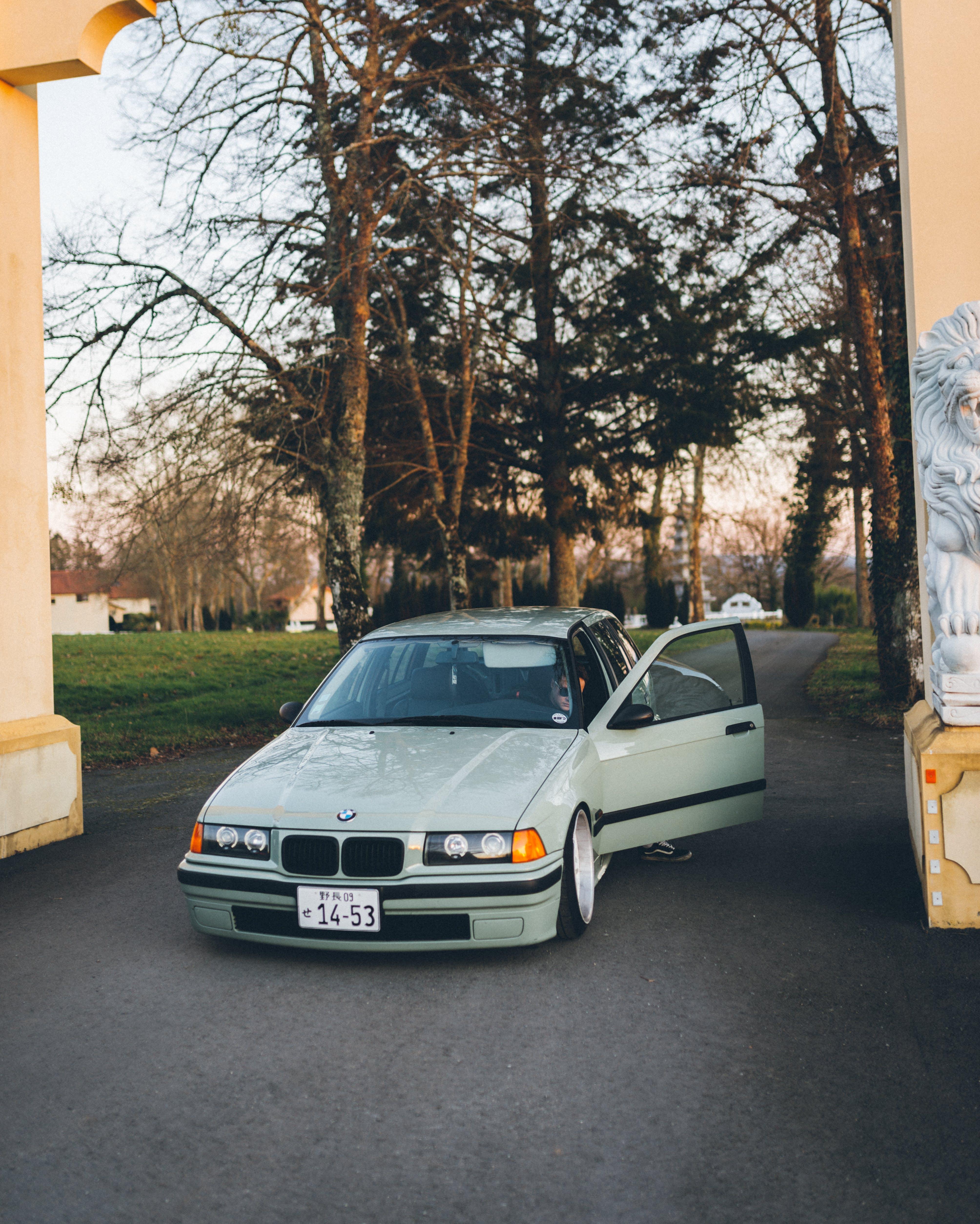 Fotos de stock gratuitas de aparcado, arboles, asfalto, automotor