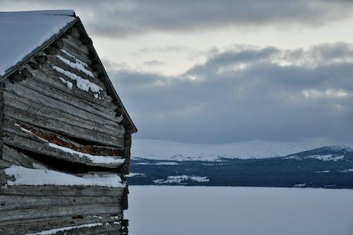 Free stock photo of mountain, winter
