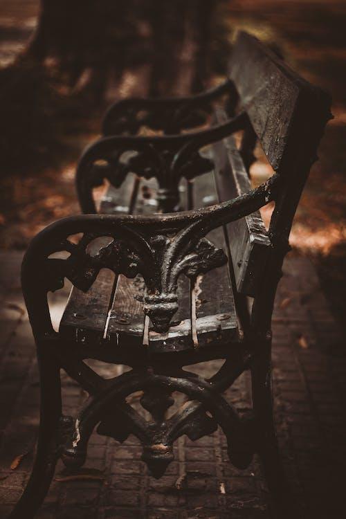 Kostnadsfri bild av bänk, tömma, träben