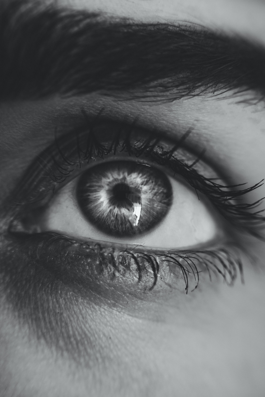 blanc i negre, cella, globus ocular