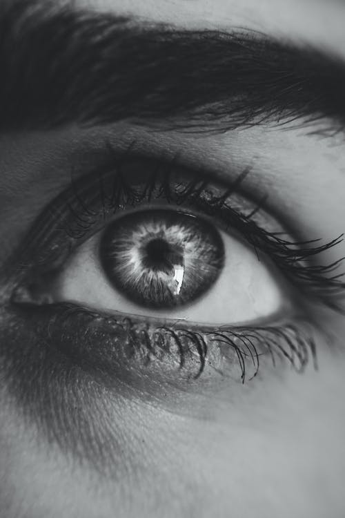Grayscale Photography of Left Person's Eye
