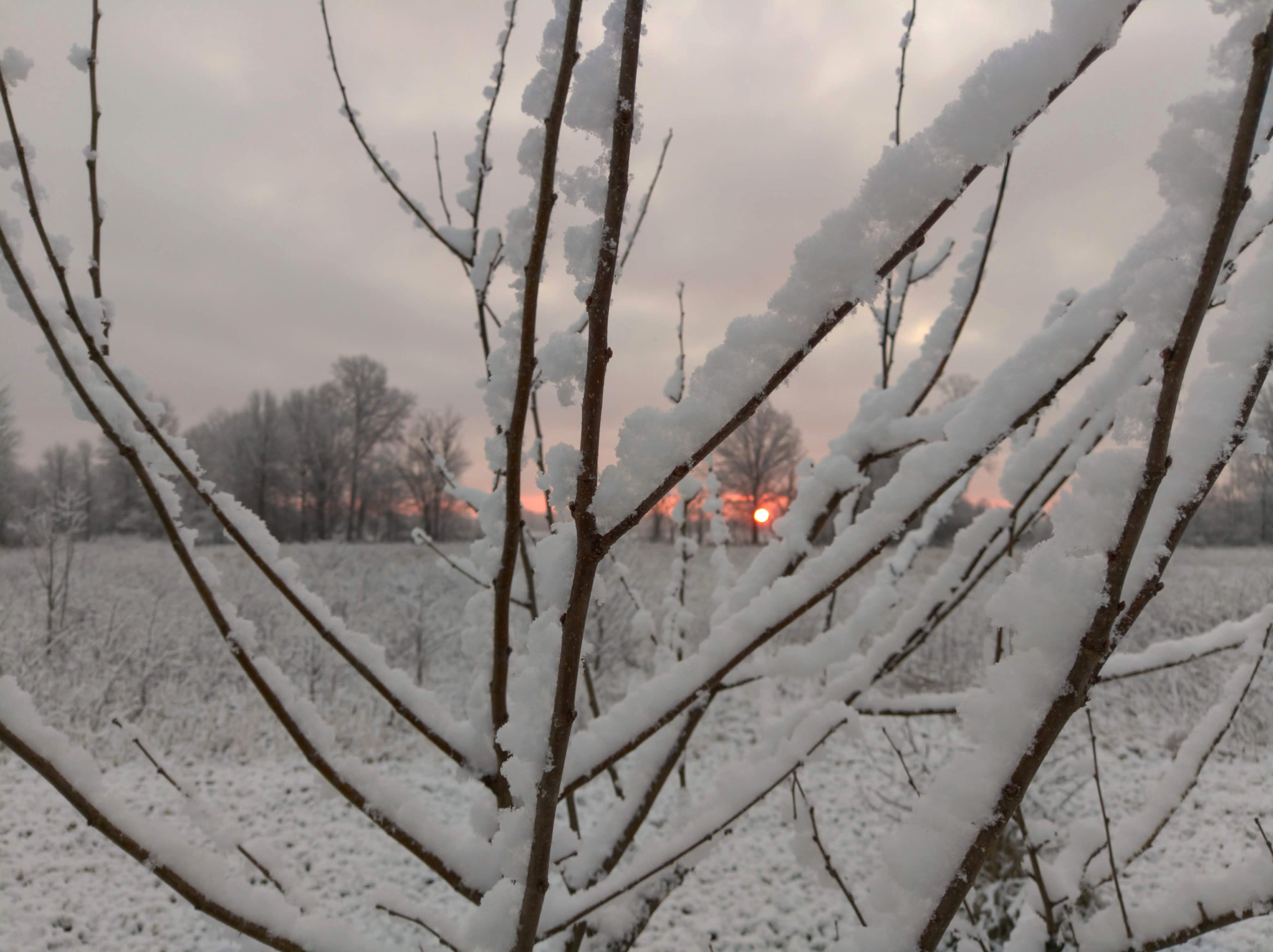 日の出, 雪の無料の写真素材