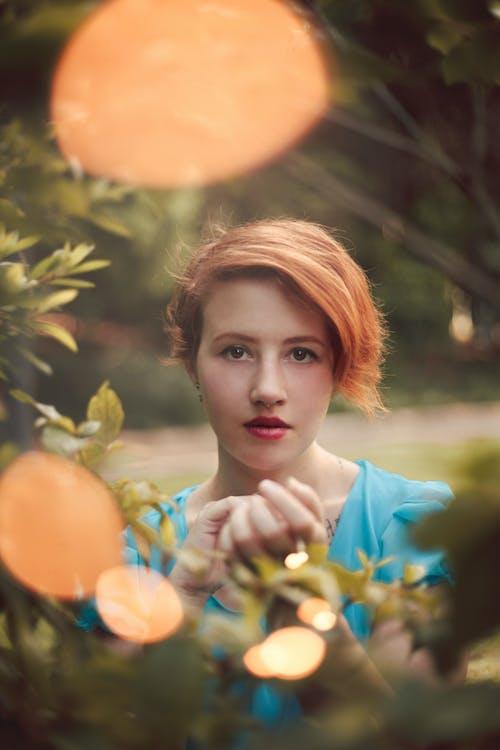 Fotos de stock gratuitas de árbol, bonita, bonito, concentrarse