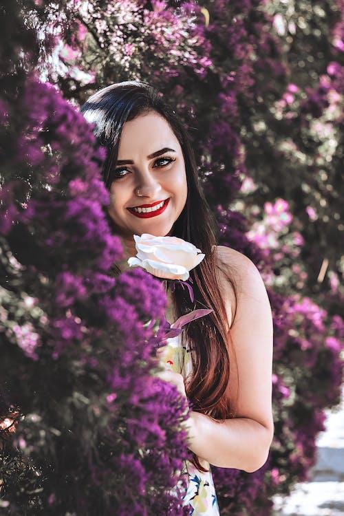 Foto stok gratis atraktif, bagus, bunga-bunga, cute