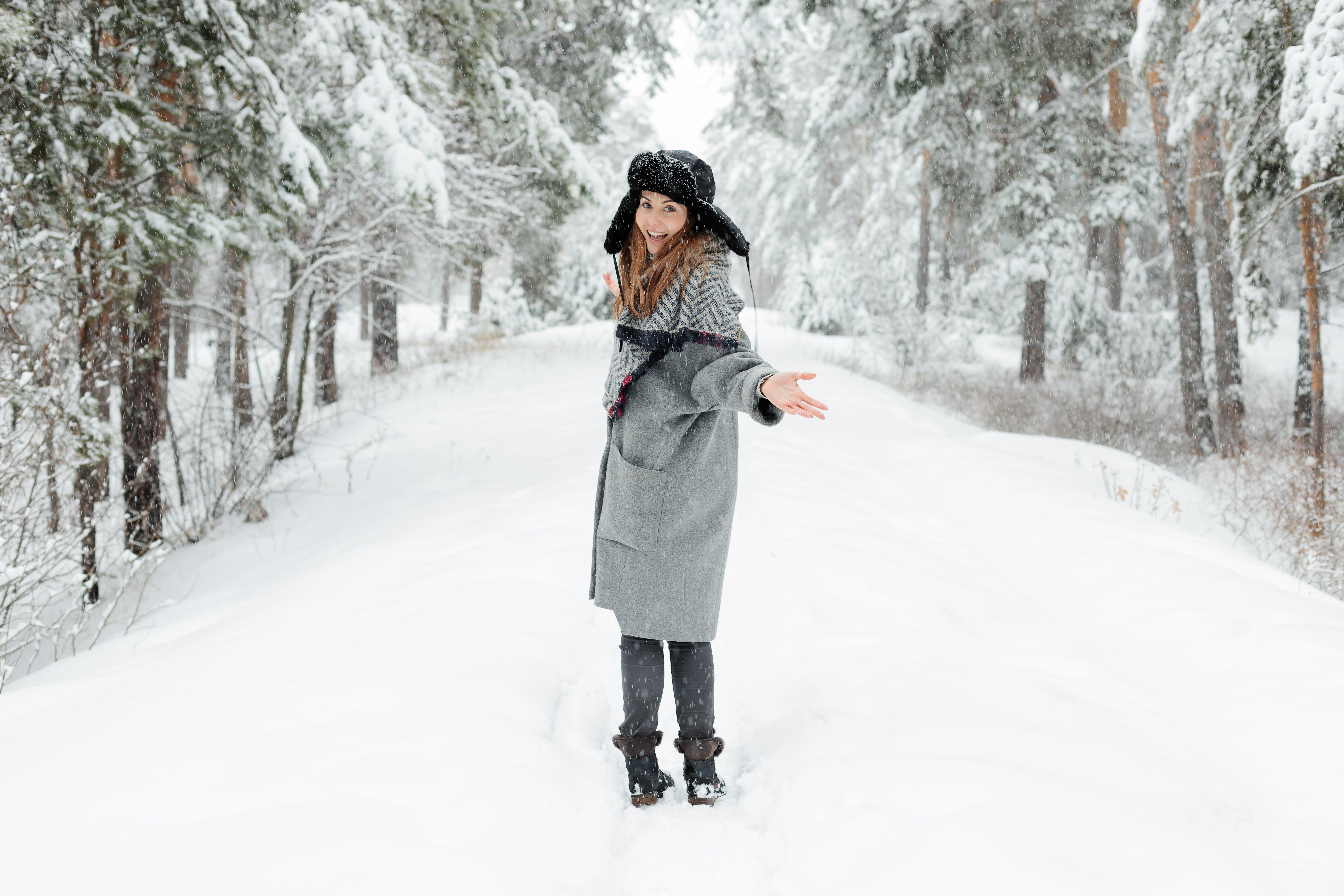 Ảnh lưu trữ miễn phí về băng, cây, có tuyết rơi, lạnh