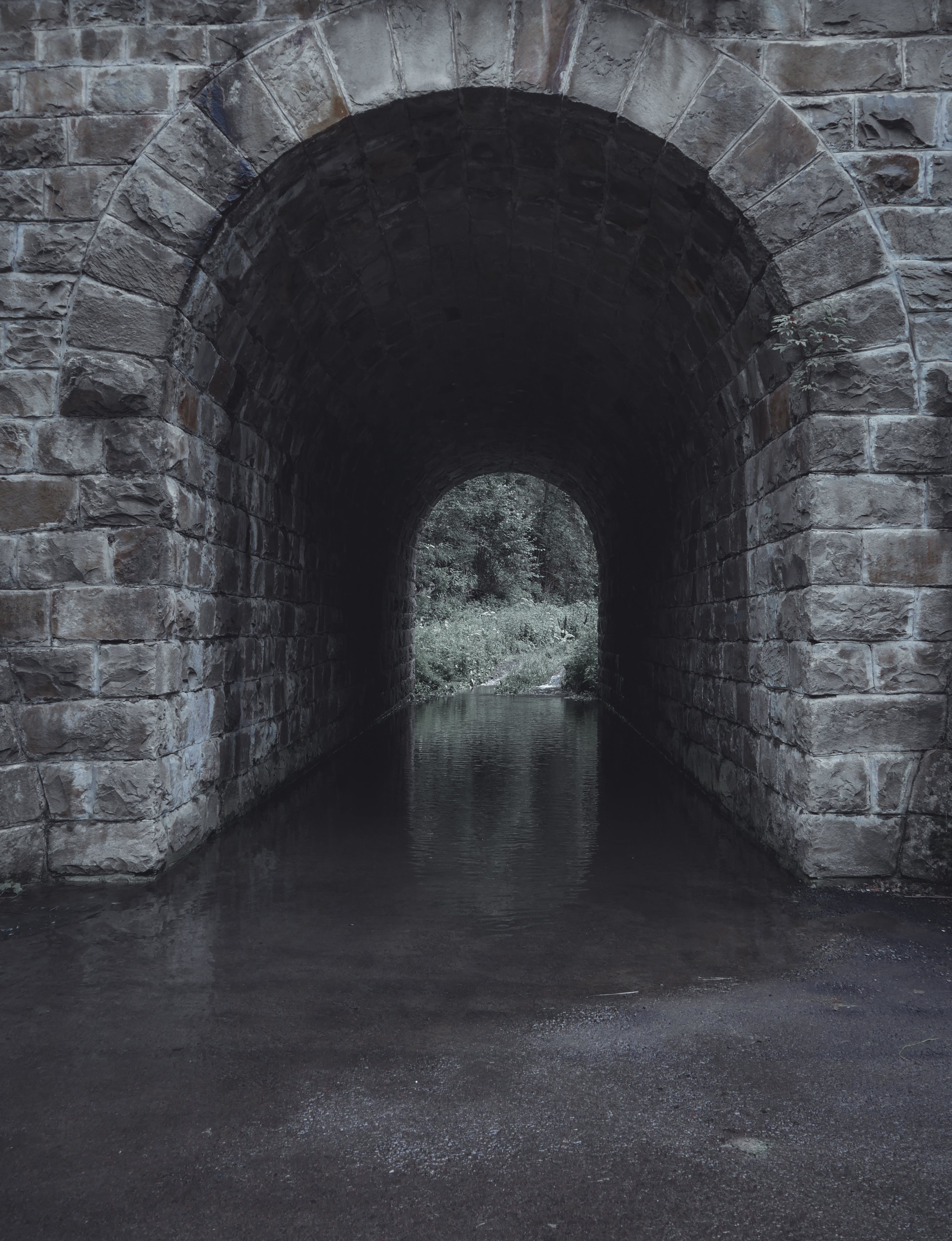 Free stock photo of dark, tunnel, tunnel view, water