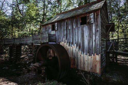 Foto d'estoc gratuïta de aigua, antiga cabina, cabana, estiu