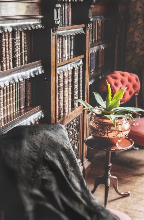 Δωρεάν στοκ φωτογραφιών με vintage, βιβλία, βιβλιοδεσίες, βιβλιοθήκη