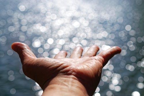 Základová fotografie zdarma na téma dlaň, lesk, naděje, oceán