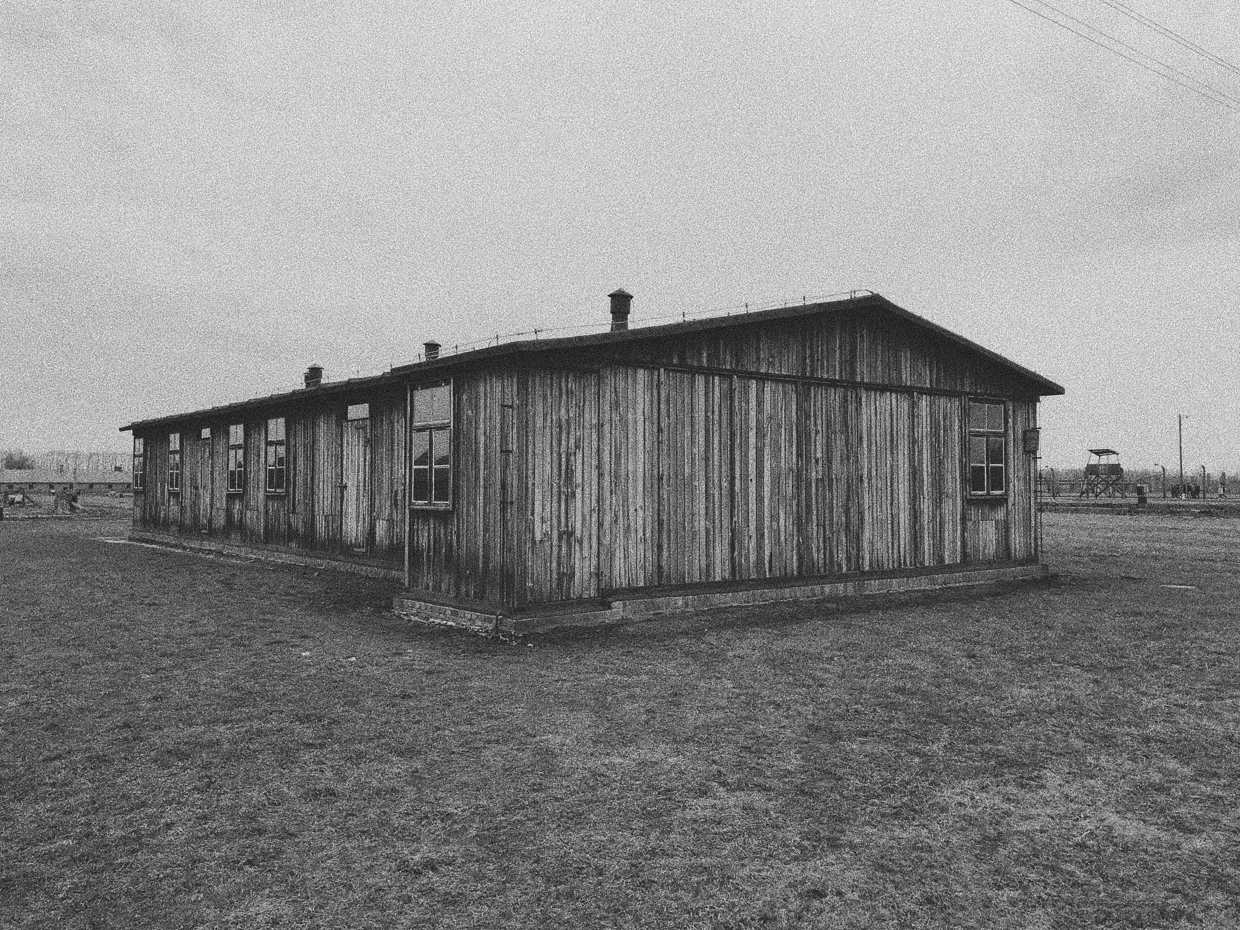 Free stock photo of black and white, holocaust, holocaust memorial, moody