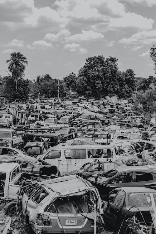 arabalar, araçlar, otomobiller, siyah ve beyaz içeren Ücretsiz stok fotoğraf