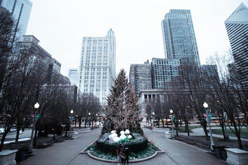 Immagine gratuita di alberi, architettura, centro città, città
