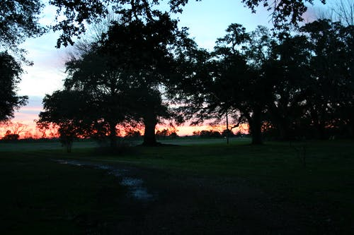 Free stock photo of louisiana, sunset
