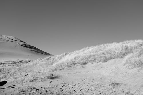 Fotos de stock gratuitas de arena, blanco y negro, césped, cielo