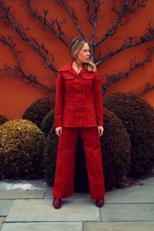 Imagine de stoc gratuită din adult, femeie, frumos, îmbracă