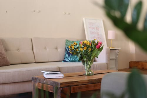 Безкоштовне стокове фото на тему «інтер'єр, ваза, диван, кімната»