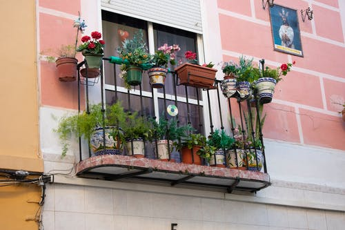 Бесплатное стоковое фото с андалусия, Балкон, цветы