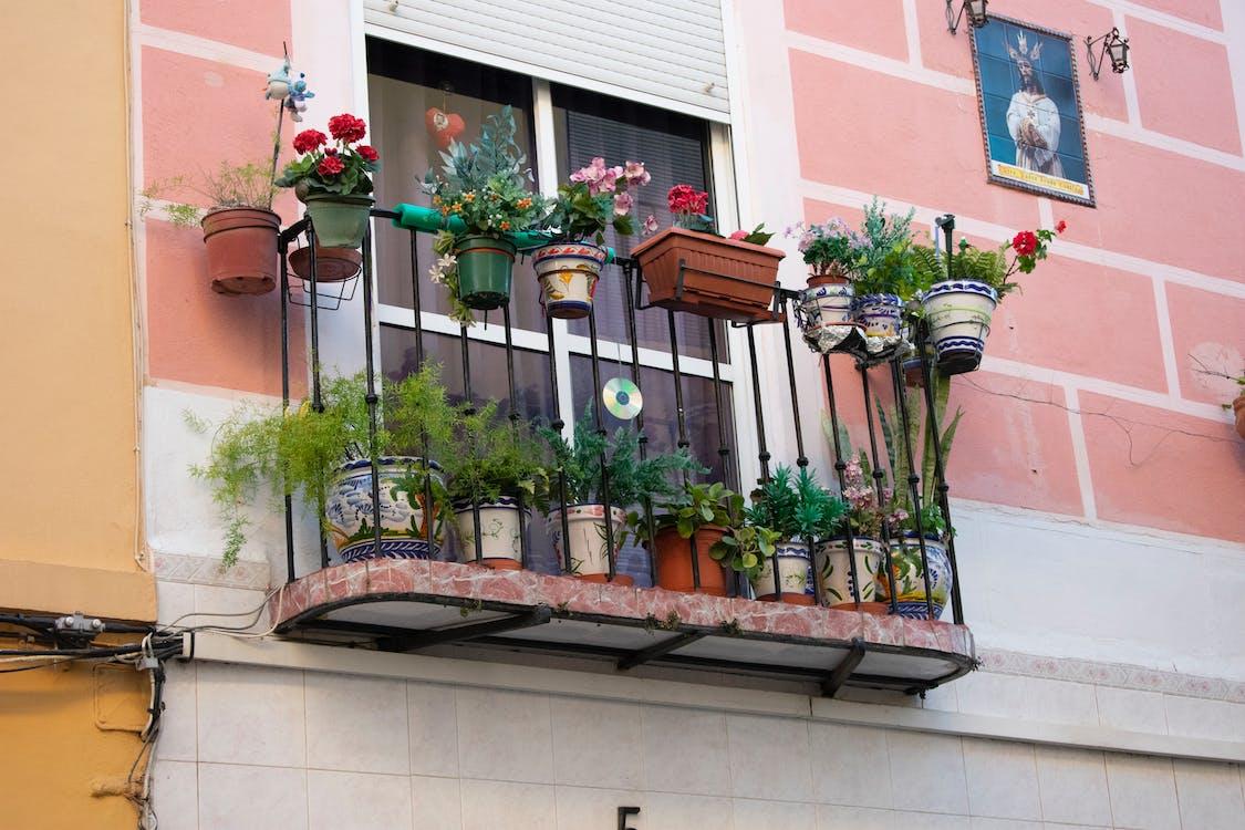 ανδαλουσία, λουλούδια, μπαλκόνι