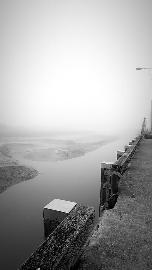 Photos gratuites de noir et blanc