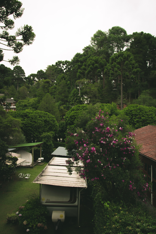 Kostenloses Stock Foto zu architektur, bäume, garten, gebäude