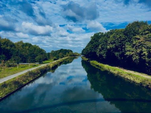 Immagine gratuita di acqua azzurra, Adobe Photoshop, alberi