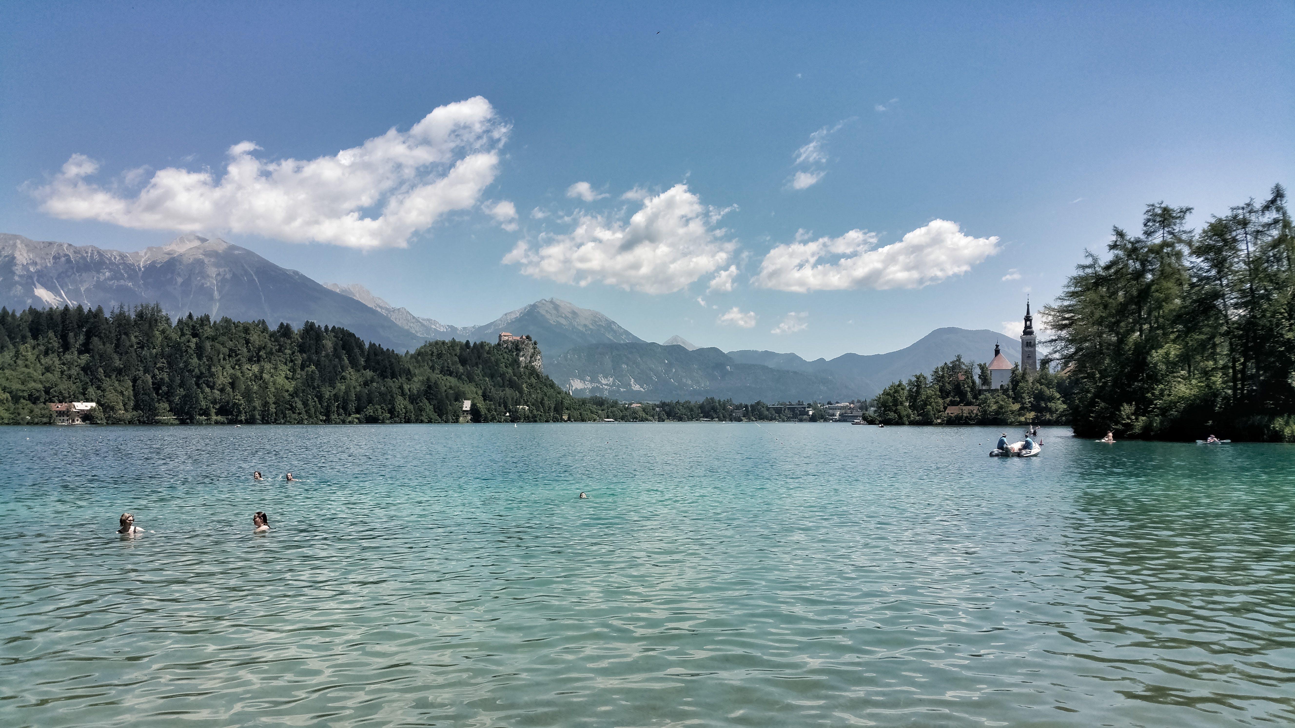 Free stock photo of bled, Blejsko jezero, lagoon, peaceful