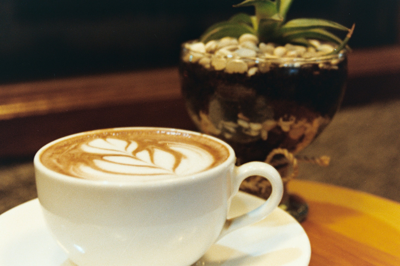 Kostenloses Stock Foto zu cappuccino, kaffee, kaffee trinken, kaffeebecher