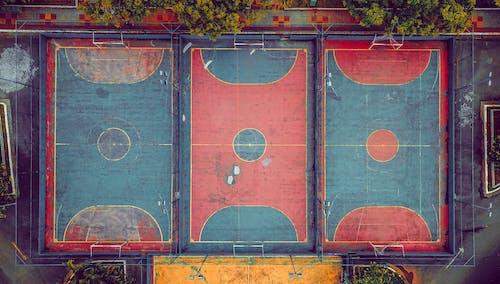 樹木, 無人空拍機, 空中拍攝, 空拍圖 的 免费素材照片