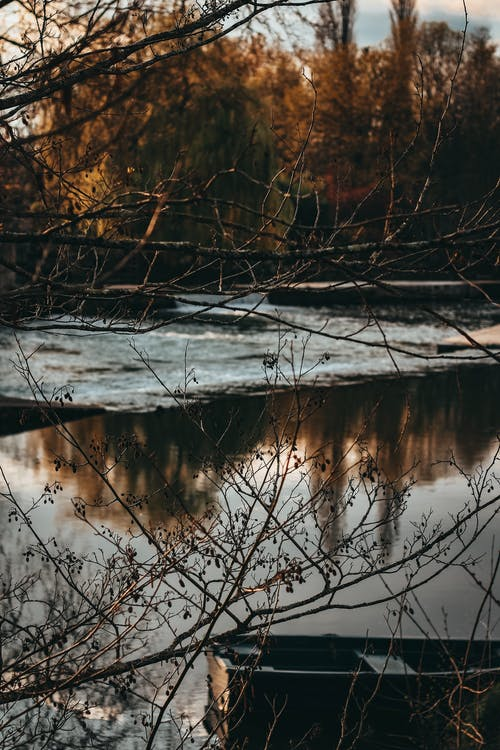 反射, 天性, 日光, 景觀 的 免费素材照片