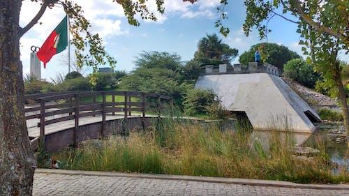 Free stock photo of bridge, landscape, trees