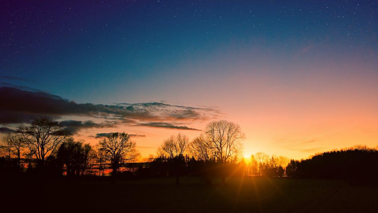 gylden time, landskap, mørk