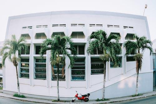 Kostenloses Stock Foto zu architektur, chaly, gebäude, straße