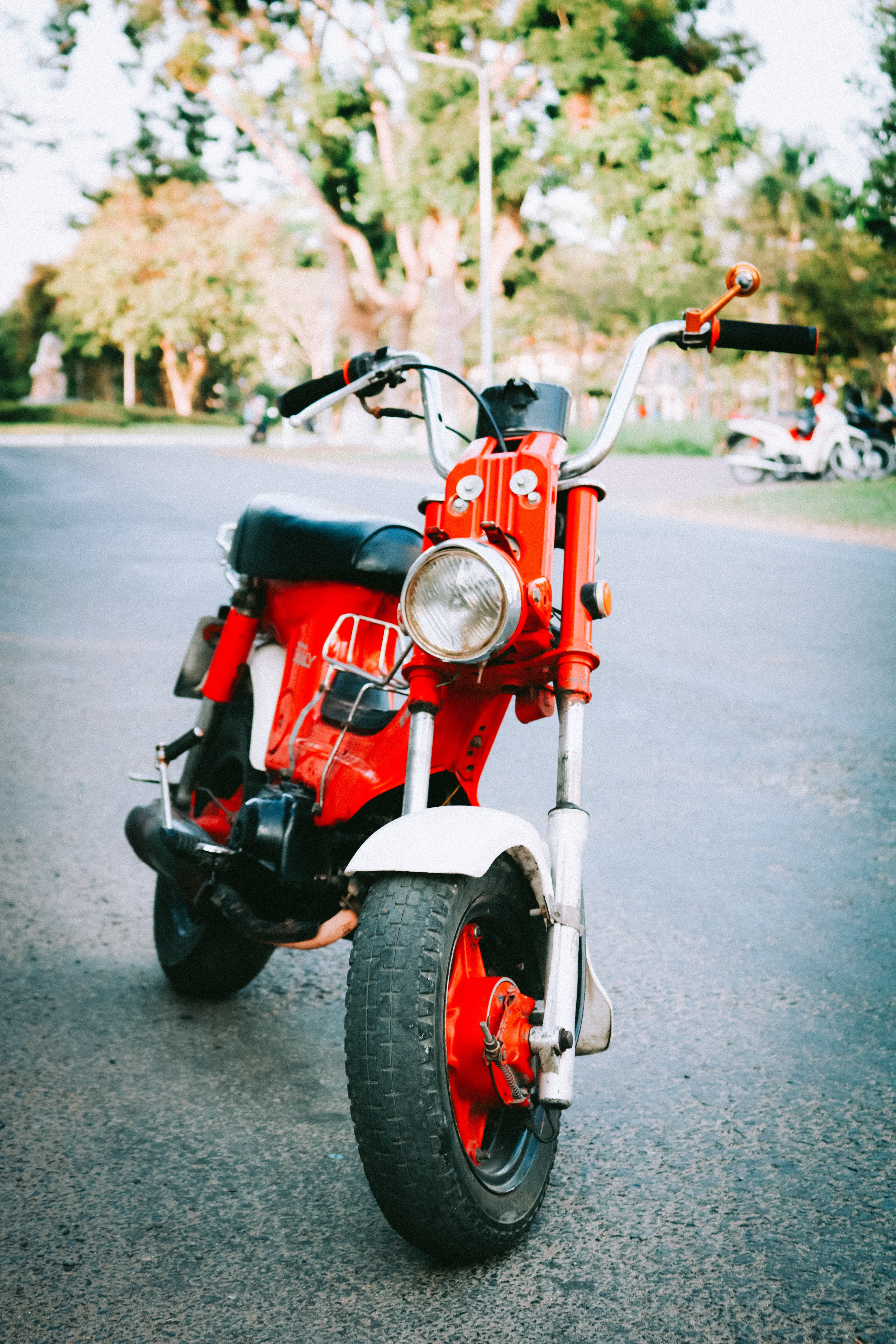 Black And Red Pedal Moped