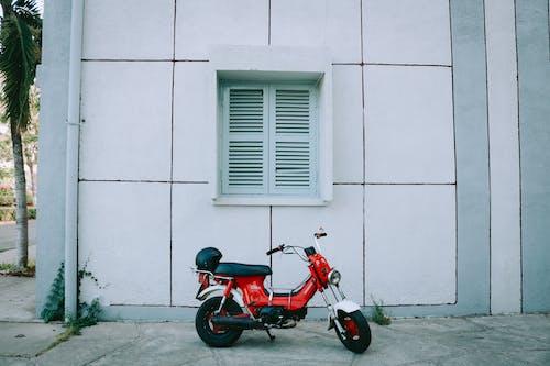 Foto d'estoc gratuïta de carrer, edifici, finestra, honda