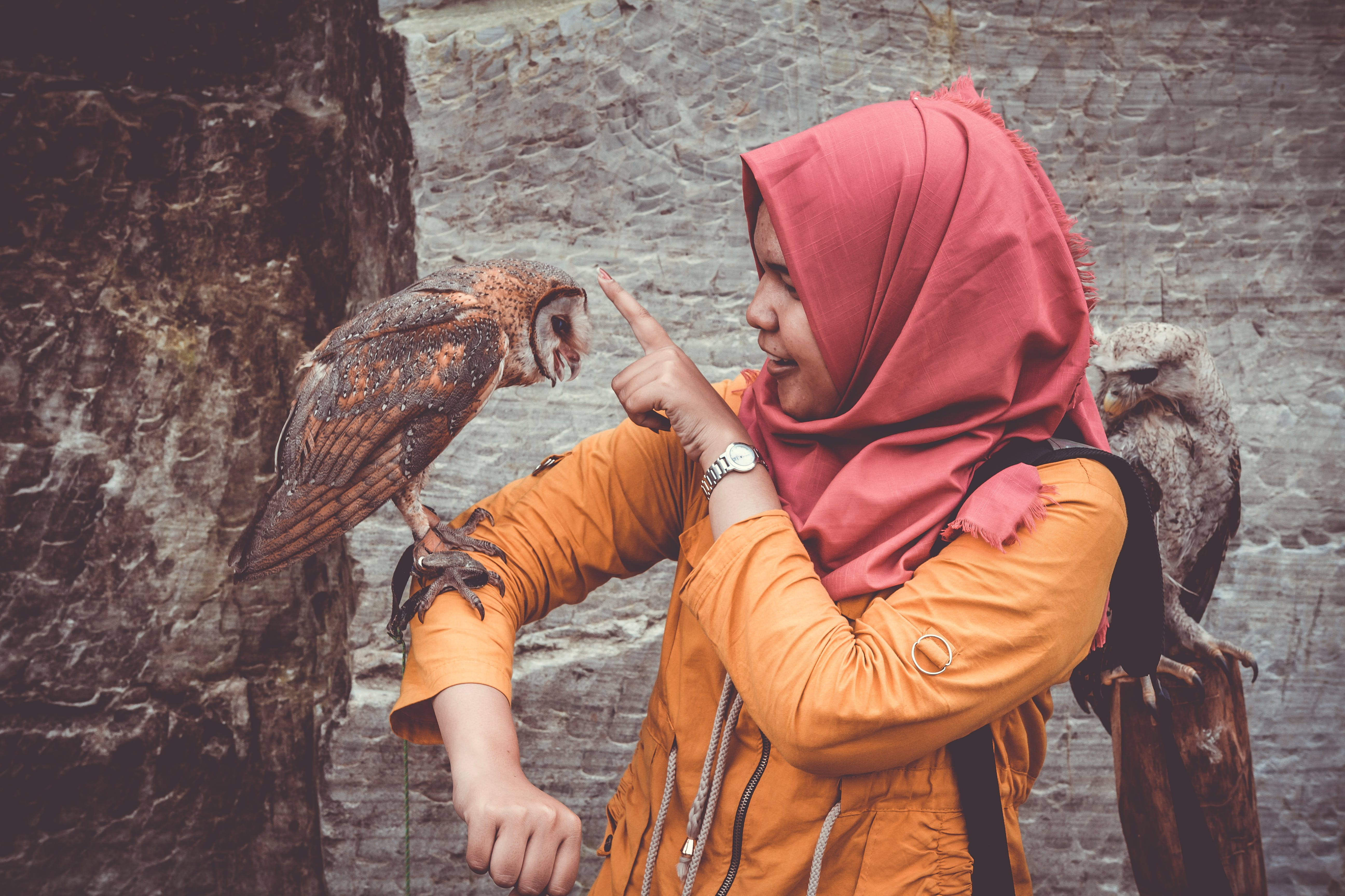 Woman in Red Hijab and Orange Coat Touching Brown and White Owl