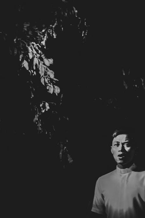 Δωρεάν στοκ φωτογραφιών με άνδρας, ασπρόμαυρο, δέντρο, λειτουργία πορτρέτου
