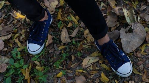Kostnadsfri bild av blå och vit, blåa skor, duk, gatufoto