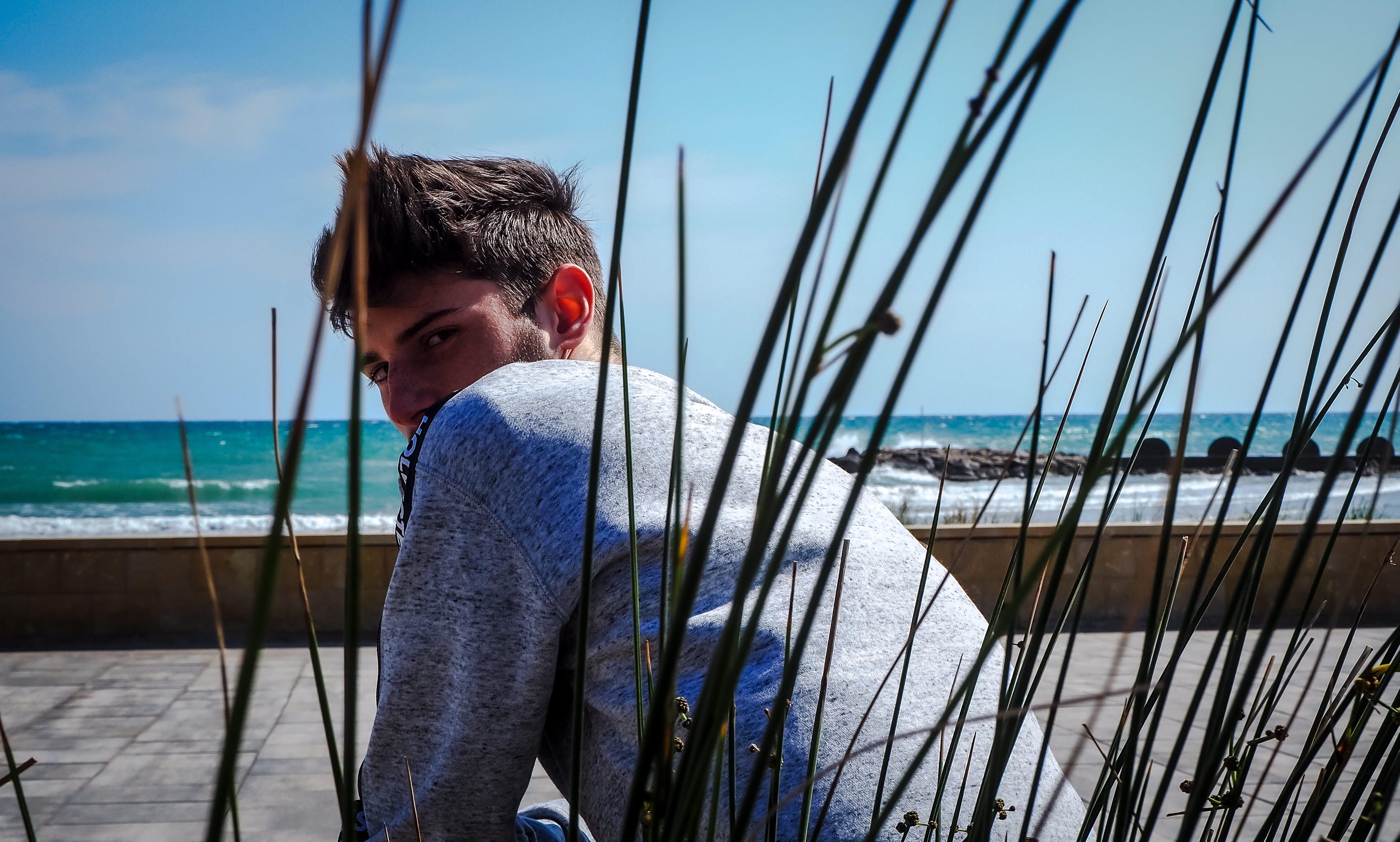 Free stock photo of beach, blue, blur, fur