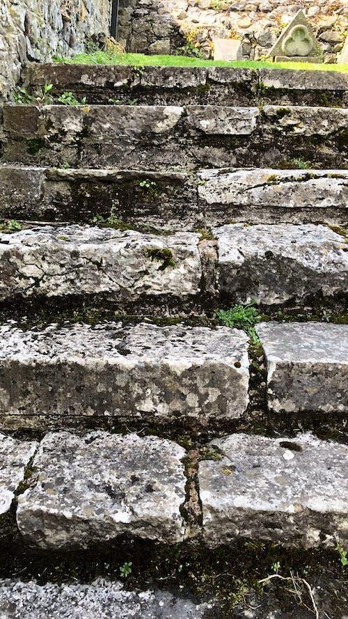 Бесплатное стоковое фото с зеленый, камни