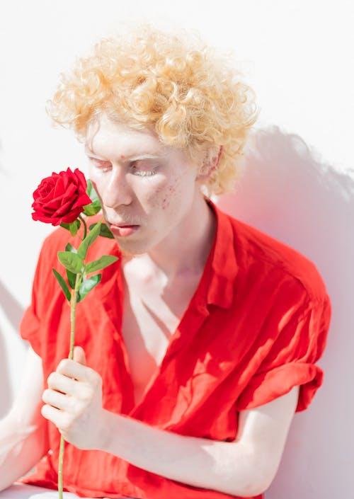 Foto stok gratis berambut pirang, berbunga, berkembang, bunga