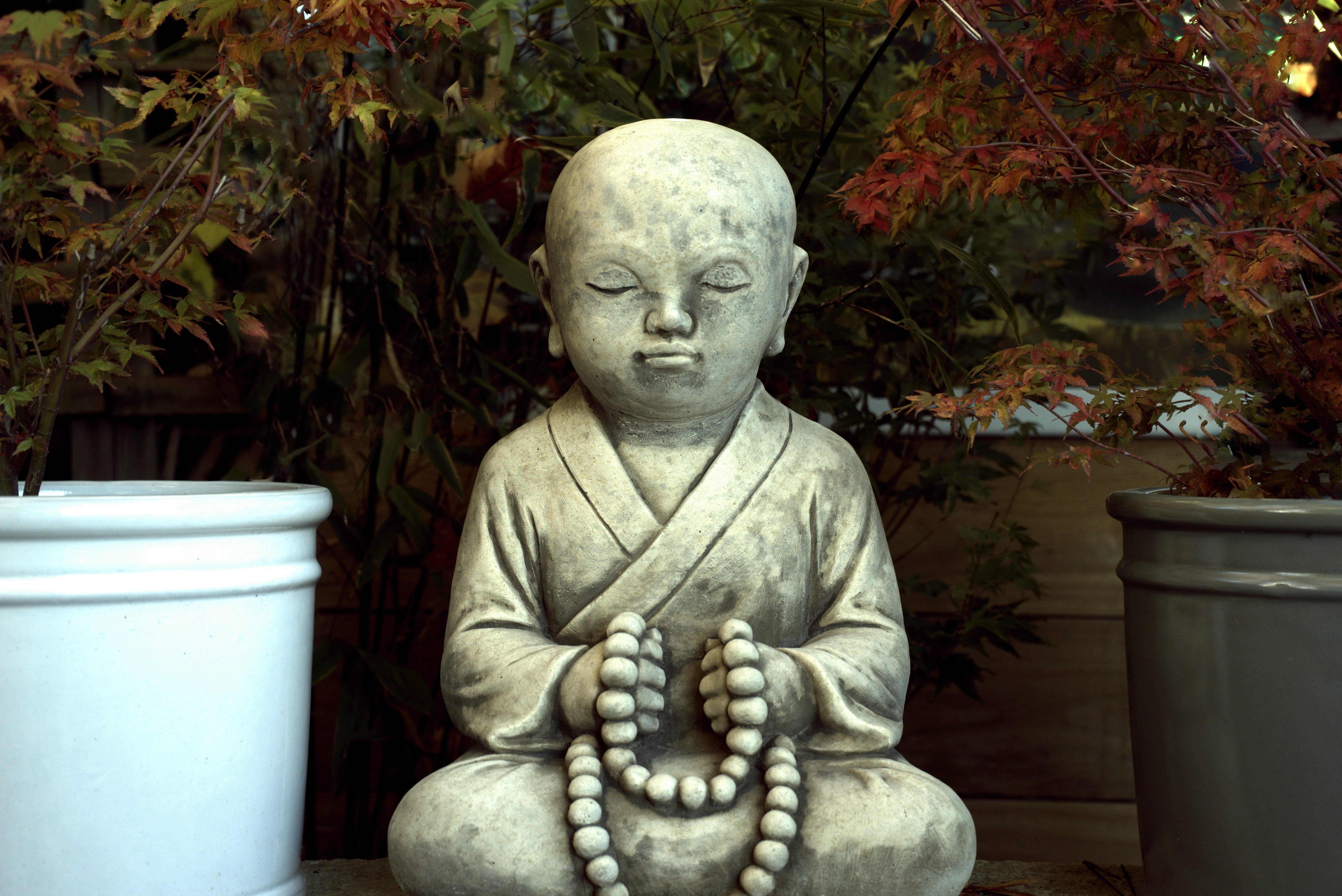 Kostnadsfri bild av andlig, andlighet, anläggning, Asien