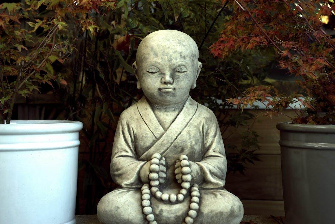 Gray Monk Statue in Between Plant Pots