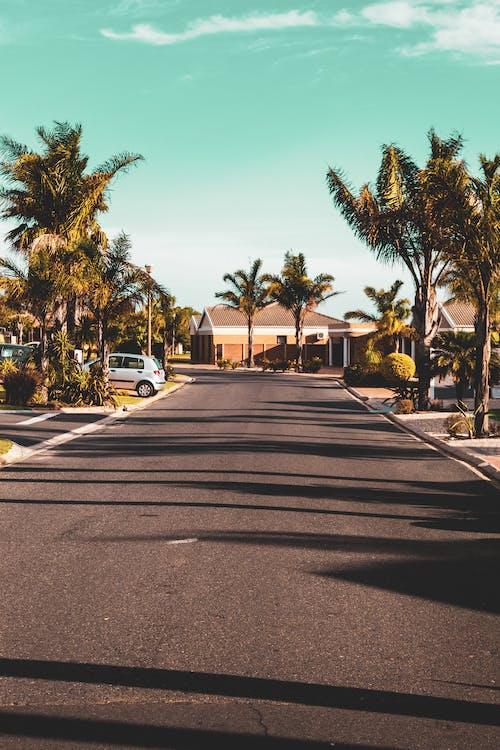 Gratis lagerfoto af #outdoorchallenge, asfalt, bil, bygninger