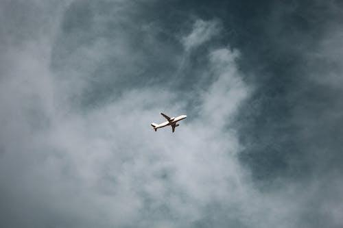 Kostenloses Stock Foto zu action, aviate, fliegen, flug