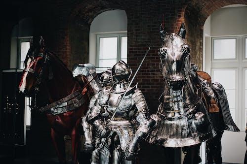 Foto profissional grátis de aço, arma, armado, armaduras