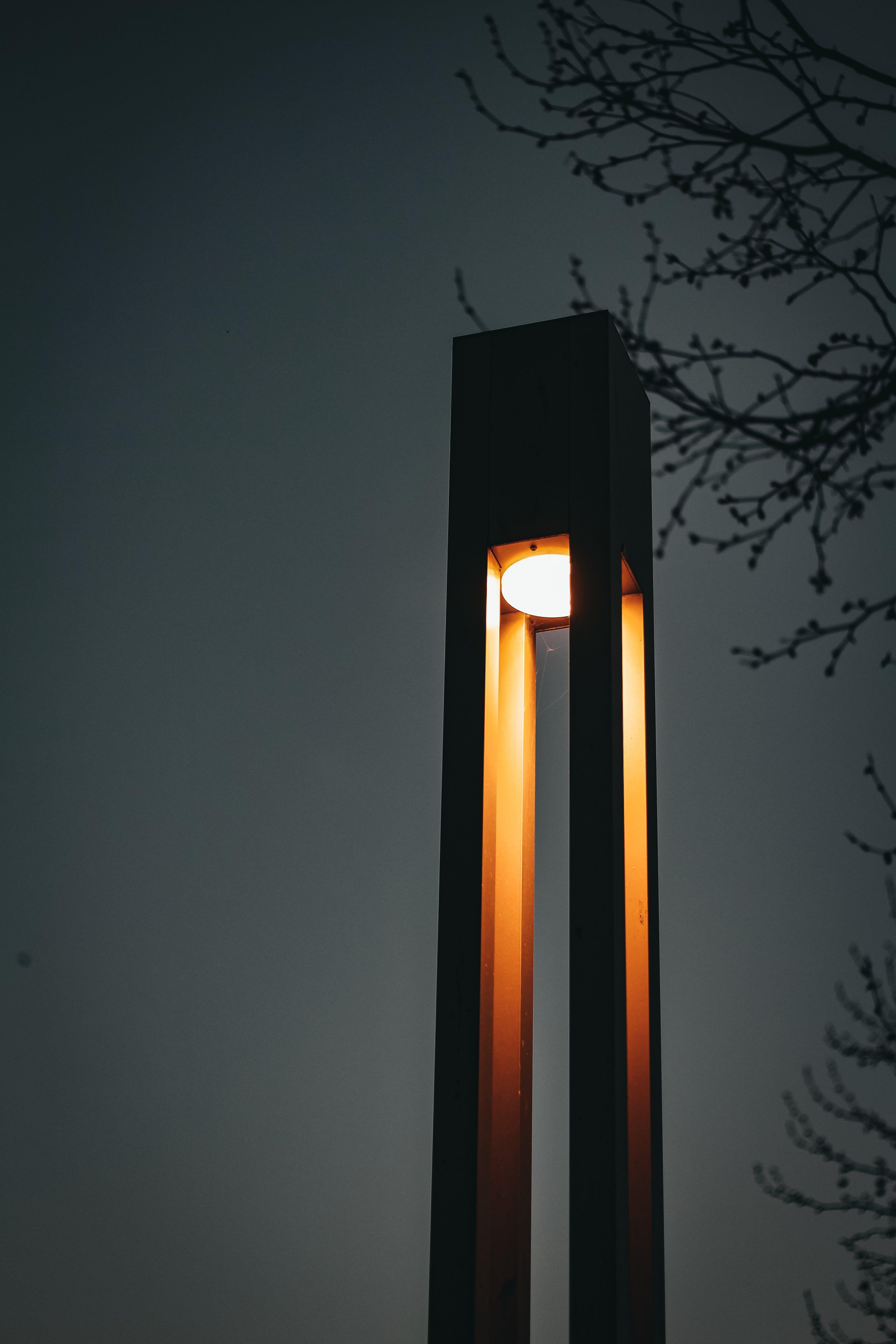 Black Lamp Post Near Tree