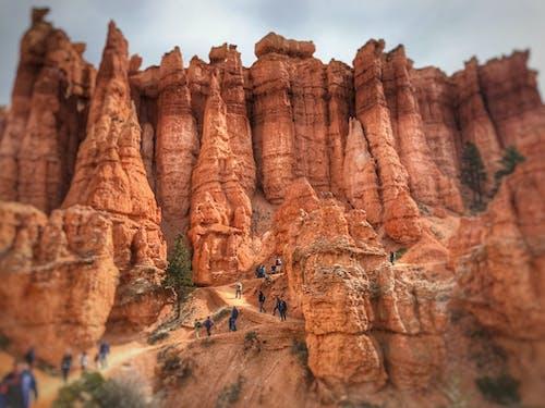 Fotos de stock gratuitas de bryce canyon