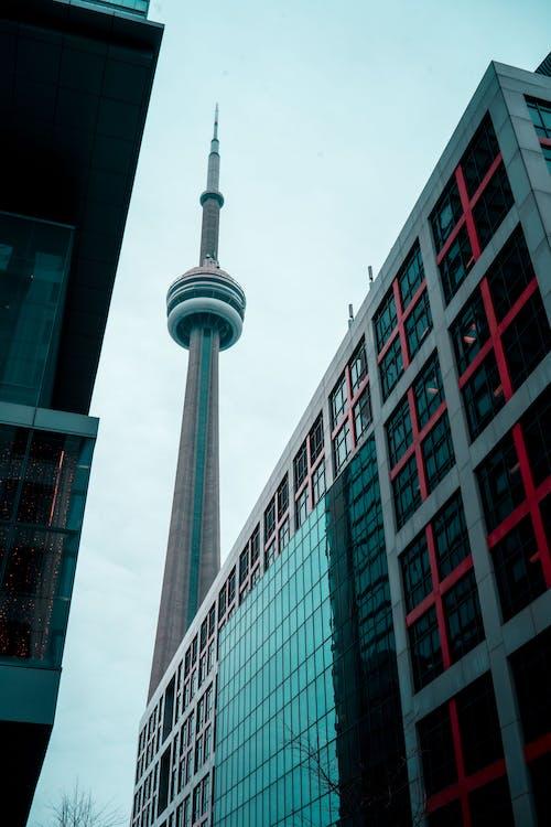 低角度攝影, 城市, 塔